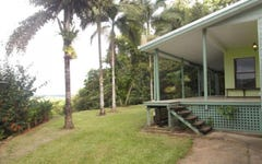 2913 Daintree Road, Daintree QLD