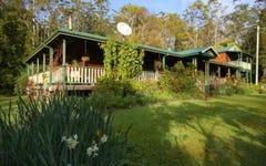 131 Taylors Creek Road, Bucca NSW