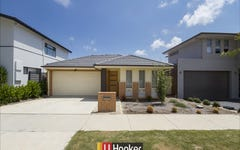 7 Blizzard Circuit, Forde ACT