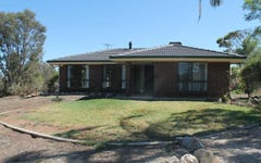 137 Radford Road, Seppeltsfield SA