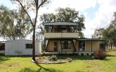 1221 Wollar Road, Cooyal NSW