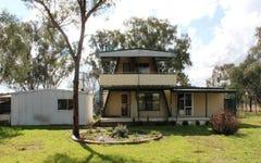 1221 Wollar Road, Cooyal NSW