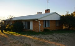 127 Carrington Road, Torrington QLD