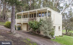 38 Mountain River Road, Grove TAS