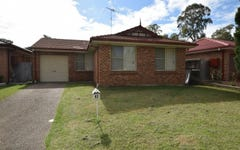 House 43 DeCastella Drive, Blacktown NSW