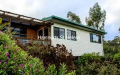5 Longhill Place, St Helens TAS
