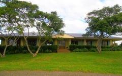 61 Lenaghans Drive, Black Hill NSW