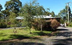 550 Porters Bridge Road, Reedy Marsh TAS