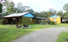 13563 Highland Lakes Road, Golden Valley TAS