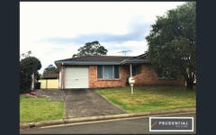 14 Lobelia Street, Macquarie Fields NSW