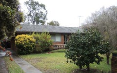 10 Carlisle street, Ingleburn NSW