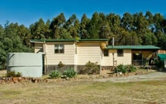 474 River Road, Reedy Marsh TAS
