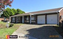 11 Chasselas Avenue, Eschol Park NSW