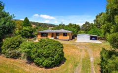 23 Lollara Road, Grove TAS