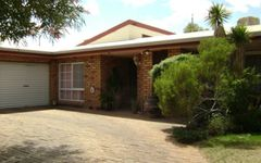 266 Bromley Road, Robinvale VIC