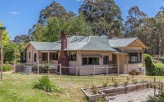 1807 Pelverata Road, Upper Woodstock TAS