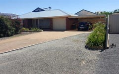 4 Castine Tce, Riverton SA