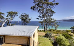 101 Big Roaring Beach Road, Surveyors Bay TAS