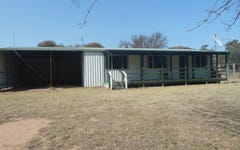 1619 Laheys Creek Road, Gulgong NSW