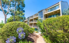 38/53 McMillan Crescent, Griffith ACT