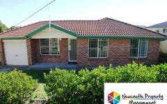 47 Minmi Road, Edgeworth NSW