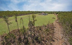 41650 Bruce Highway, Bluewater QLD