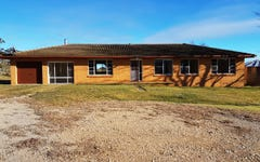 11003 Thunderbolts Way, Walcha NSW