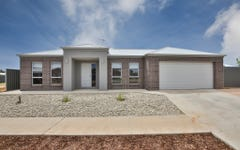 30 Betty Krake Drive, Red Cliffs VIC
