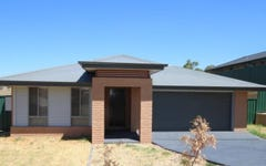 53 Henry Danger Drive, Muswellbrook NSW