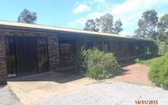 536 Tintinhull Road, Daruka NSW
