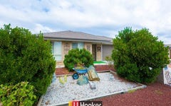 8 Herdson Place, MacGregor ACT