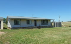 202 Snelsons Lane, Gulgong NSW
