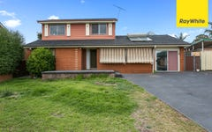 20 Loddon Crescent, Campbelltown NSW