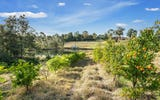 LAND 753 Grose Vale Road, Grose Vale NSW
