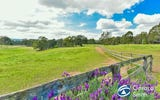 125 Mulhollands Road, Picton NSW