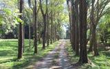 379 Pearces Creek Road, Alstonvale NSW