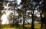 167 Lakes Blvde, Wooloweyah NSW