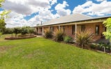 2972 Mitchell Highway, Molong NSW