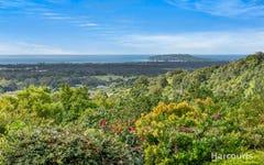 1681 Hinterland Way, McLeods Shoot NSW