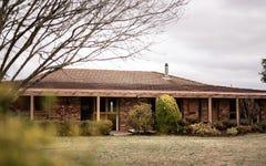 424 Mount Lindesay Road, Tenterfield NSW