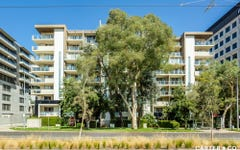 3/219a Northbourne Avenue, Turner ACT