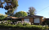 236 Fernleigh Road, Ashmont NSW