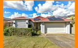 13 Pepperina Place, Drewvale QLD