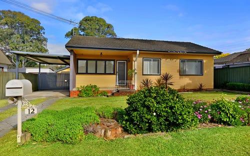 12 Portia Road, Toongabbie NSW