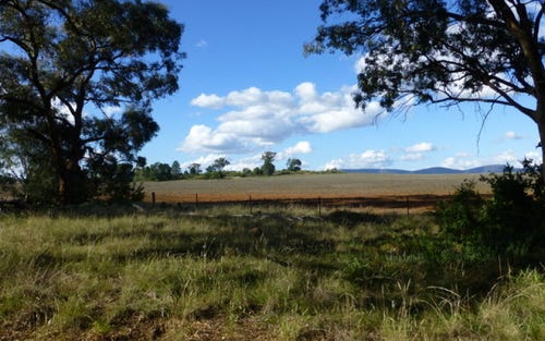 Lot 15 Newell Highway, Peak Hill NSW 2869
