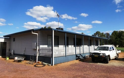 397 Stringer Road, Leeton NSW 2705