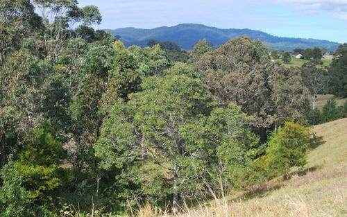 Lot 9 Strawberry Road, Warrell Creek NSW 2447