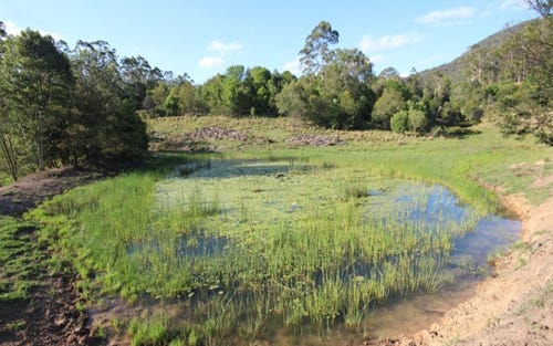 Lot 204 McGilvray Road, Killabakh NSW 2429