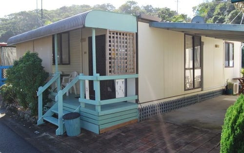 N4-52 White Albatros, Nambucca Heads NSW 2448