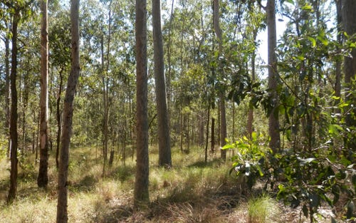 Lot 2 Clarence Way, Tabulam NSW 2469